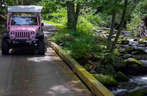 Pink Jeep - Smoky Mt